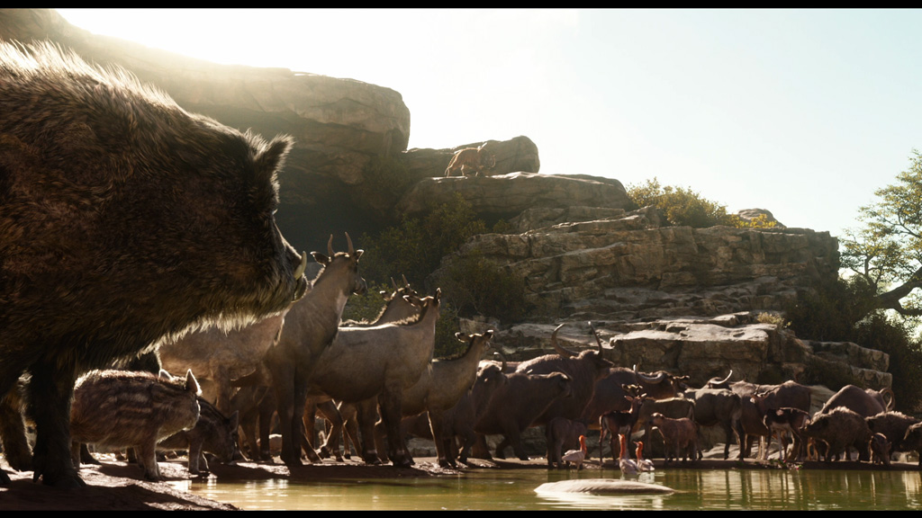 The Jungle Book - Environment sculpting and layout