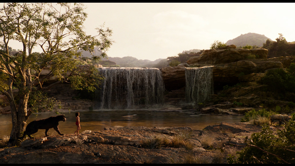 The Jungle Book - Environment Layout