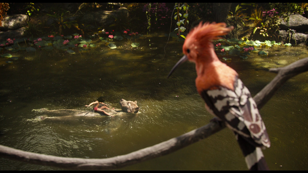 The Jungle Book - 3d Environment